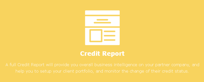china credit report